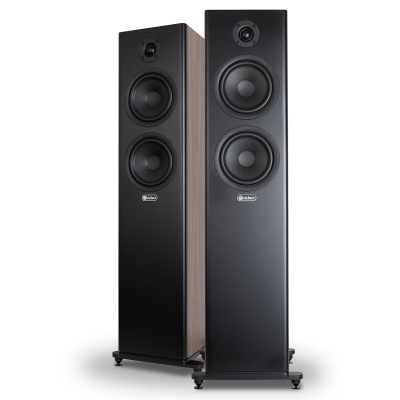 Wizard Series 6 Walnut Loudspeakers